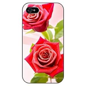设计系列之:红色玫瑰