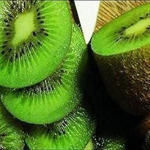 迎桂 果树苗水果之王徐香猕猴桃盆栽庭院果树 19个品种 奇异果猕猴桃3