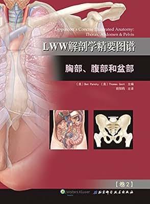 LWW解剖学精要图谱:胸部、腹部和盆部.pdf