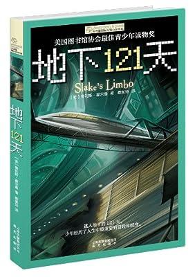 长青藤国际大奖小说书系·第2辑:地下121天.pdf