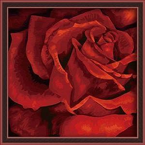 佳彩天颜 数字油画diy 客厅手绘风景情侣花草装饰画 红玫瑰x 红玫瑰