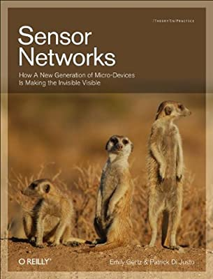 Sensor Networks.pdf