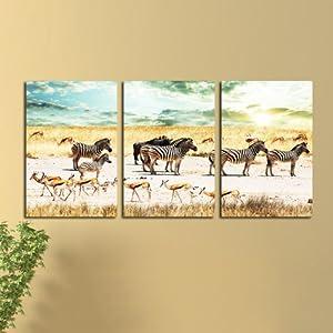 美时美刻 非洲斑马 动物壁画装饰画家居办公室无框画书房挂画三联