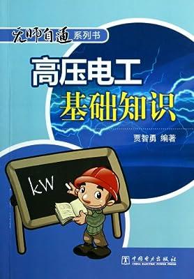 高压电工基础知识/无师自通系列书.pdf