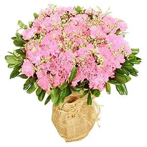 欧式粉色康乃馨(19枝)花束