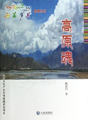高原魂/西藏岁月系列丛书.pdf