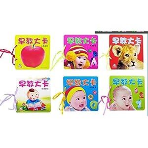 小神童早教启蒙大卡 撕不烂宝宝识图卡片 0-3岁婴儿玩具 儿童书籍