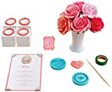 Martha Stewart Crafts Crafter's Clay Starter Kit, Heirloom