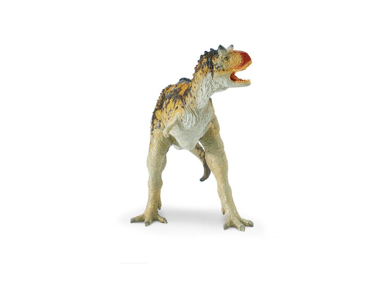 野生动物模型
