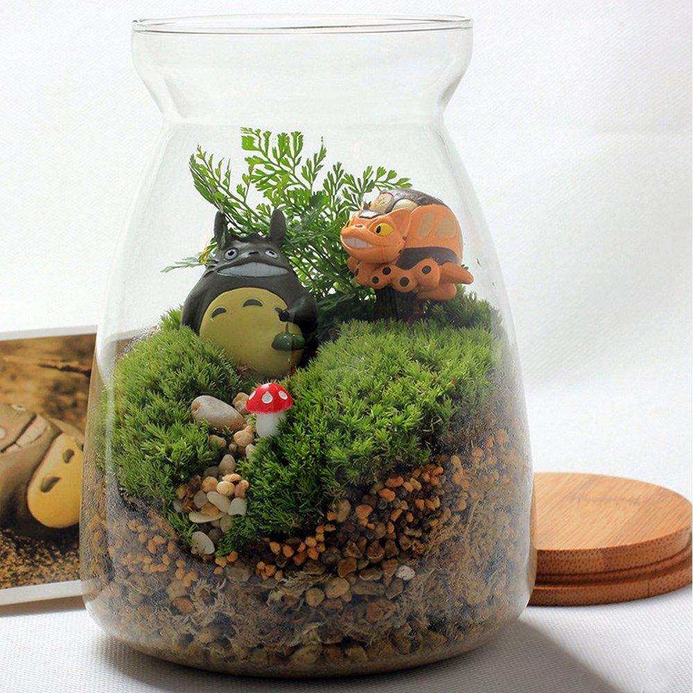 狂欢季孙小圣 diy微景观 多肉景观植物盆栽龙猫玻璃摆件 苔藓微景观
